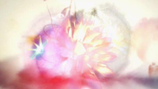 水墨风格绚烂的花朵正如片名《百花》