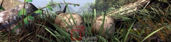 壹码视界脚本策划师运用一颗恐龙蛋贯穿整部影片